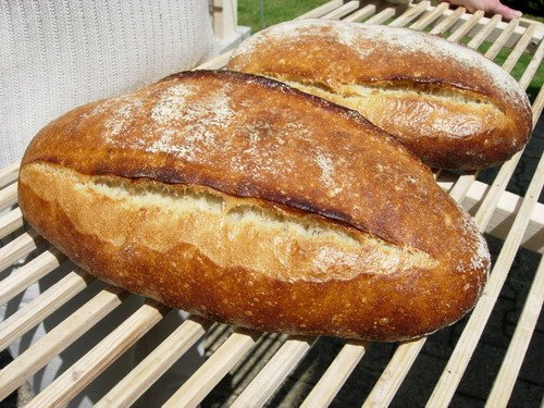 Breads cooked with steam