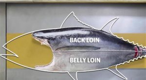 How to Break Down a Whole Tuna