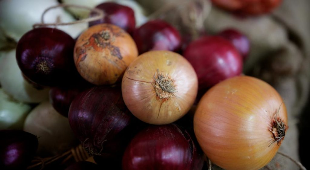 Image Result For Different Onions