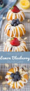 ULTIMATE Lemon Blueberry Bundt Cakes (with Poppy S…