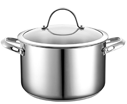 Cooks Standard 6-Quart Stainless Steel Stockpot wi...