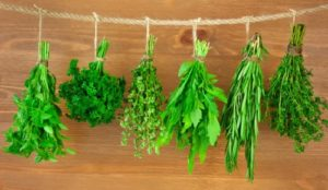 Weight Loss – Cooking With Herbs