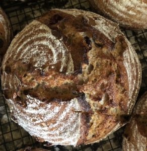 Apple Cranberry Sourdough with Hard Cider