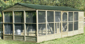 Building a Chicken Coop As Cheap As Possible