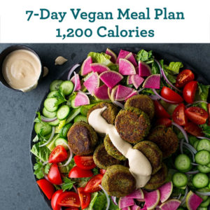 Diet Programs 101: Two Essential Elements As Revealed in Th…