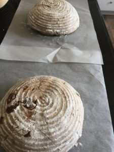 Two levain- SD and Banana YW , Fig Pecan Banana Ry…
