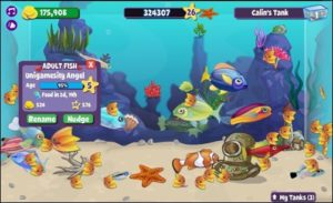 Catchy Tips and Tricks For Fishville