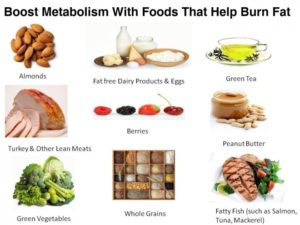 List of Fat Burning Foods – Learn How You Can Lose Weight by Eating the Right Foods
