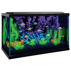 Out of the Box Aquarium Kits