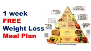 Weight Loss Diet – Lose Weight Eating Right