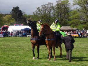 Horse Racing Tips – How To Lay Favourites And Make A Profit …