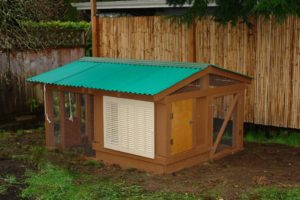 Learn How to Build a Chicken Coop The Easy Way