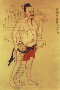 An Introduction to Chinese Traditional Medicine