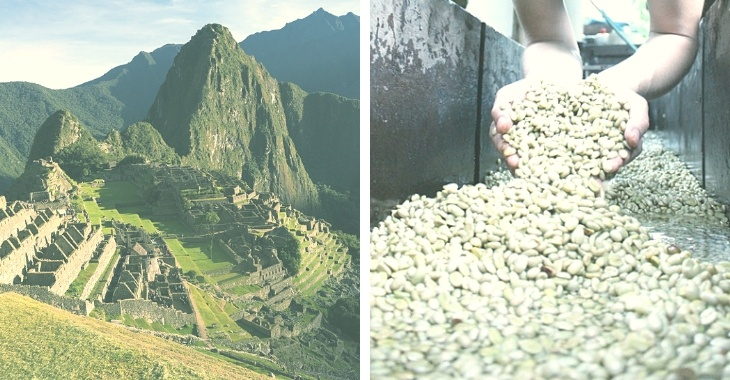 Peruvian Coffee: Buying, Brewing and Roasting Tips