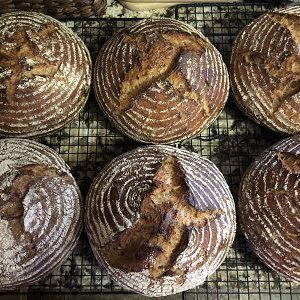 Caramelized Onion and Bacon Sourdough